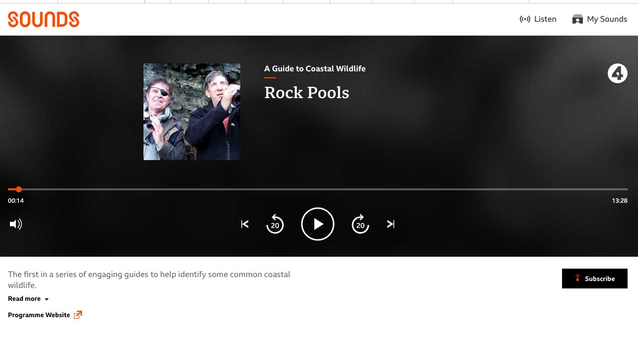 example of a web podcast player